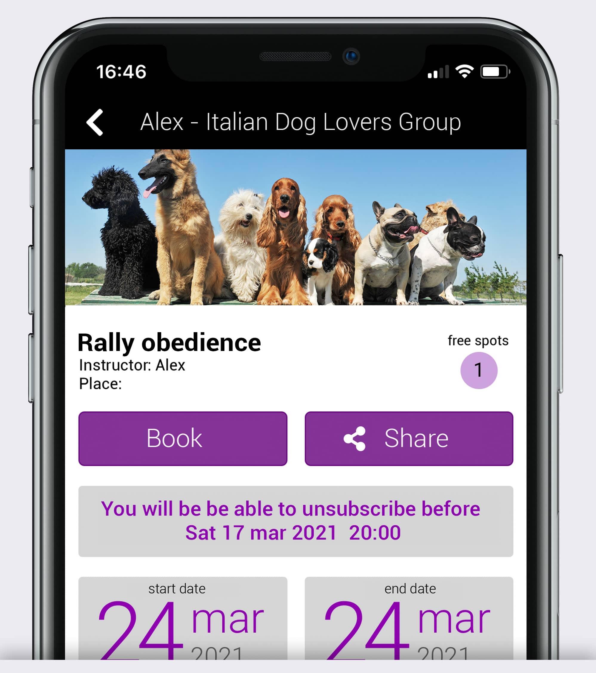 Immagini corsi e attività dogs