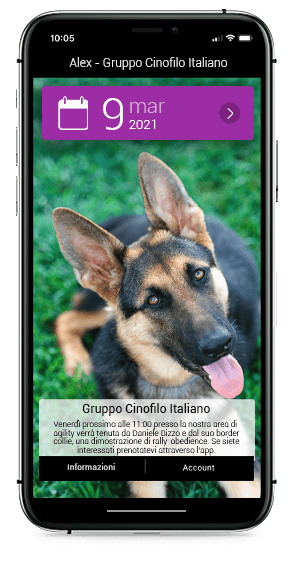 Sfondi per cani da lavoro